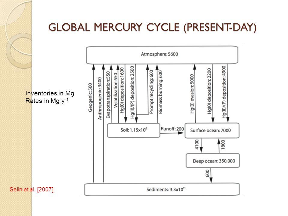 GLOBAL MERCURY CYCLE (PRESENT-DAY)
