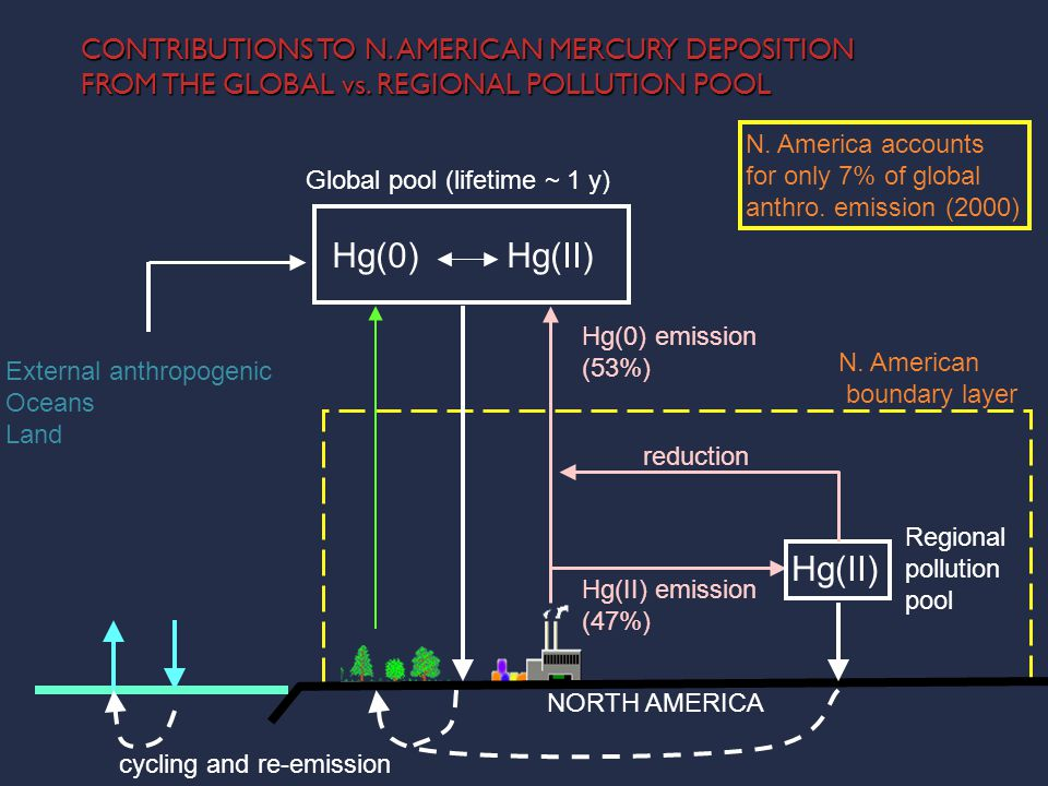 CONTRIBUTIONS TO N. AMERICAN MERCURY DEPOSITION FROM THE GLOBAL vs