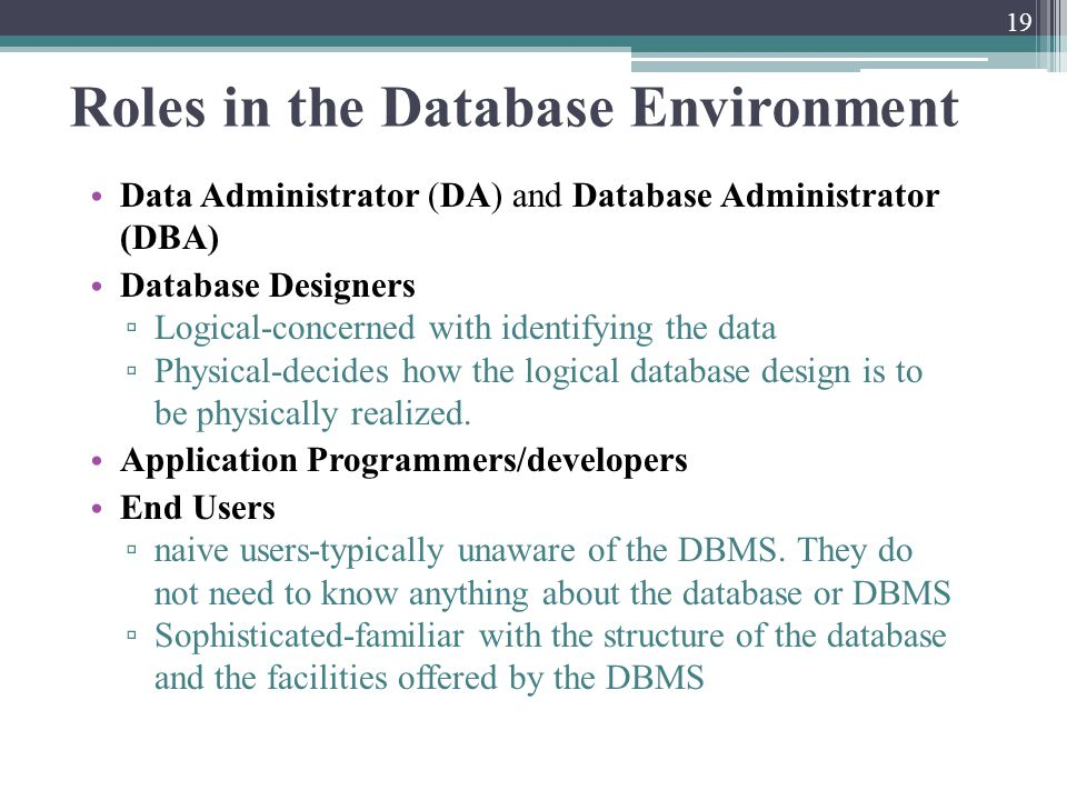 Roles in the Database Environment