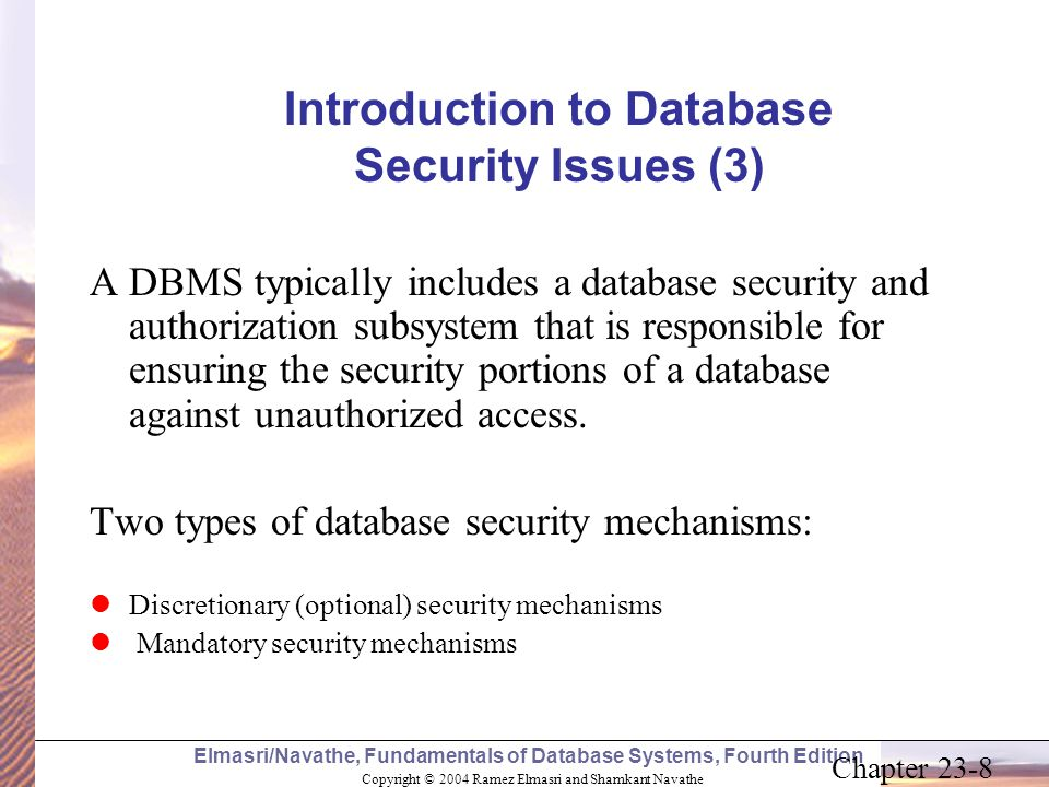 Introduction to Database Security Issues (3)