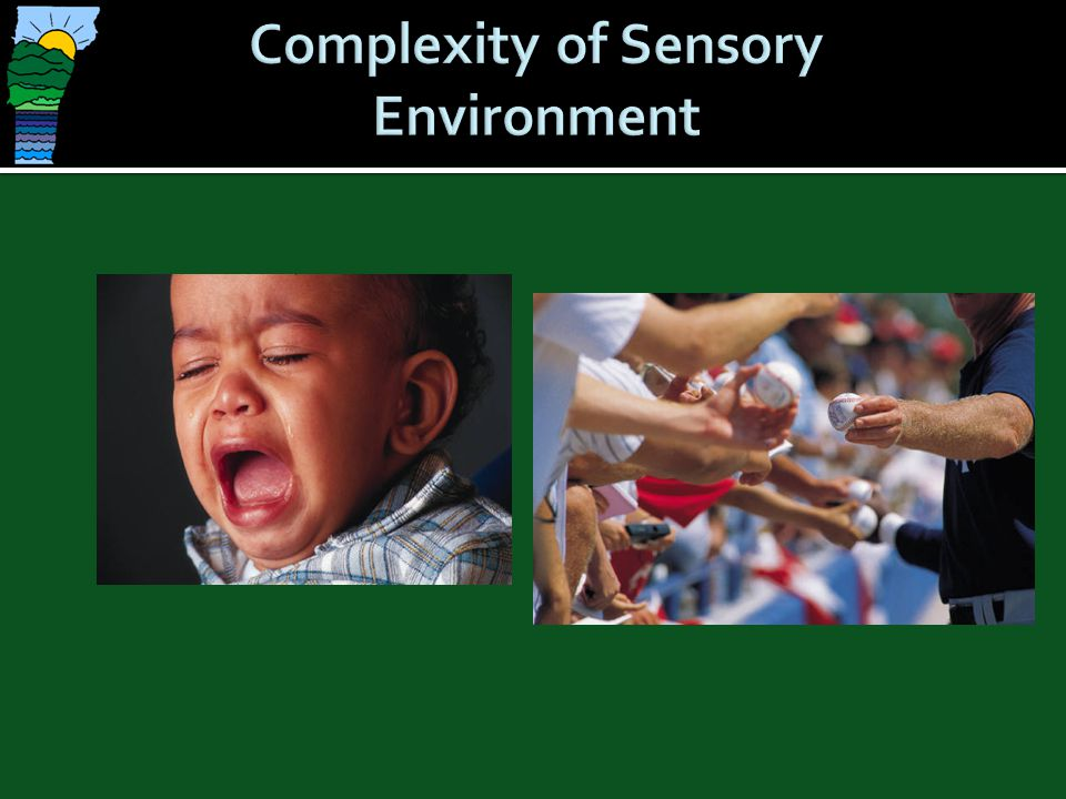 Complexity of Sensory Environment