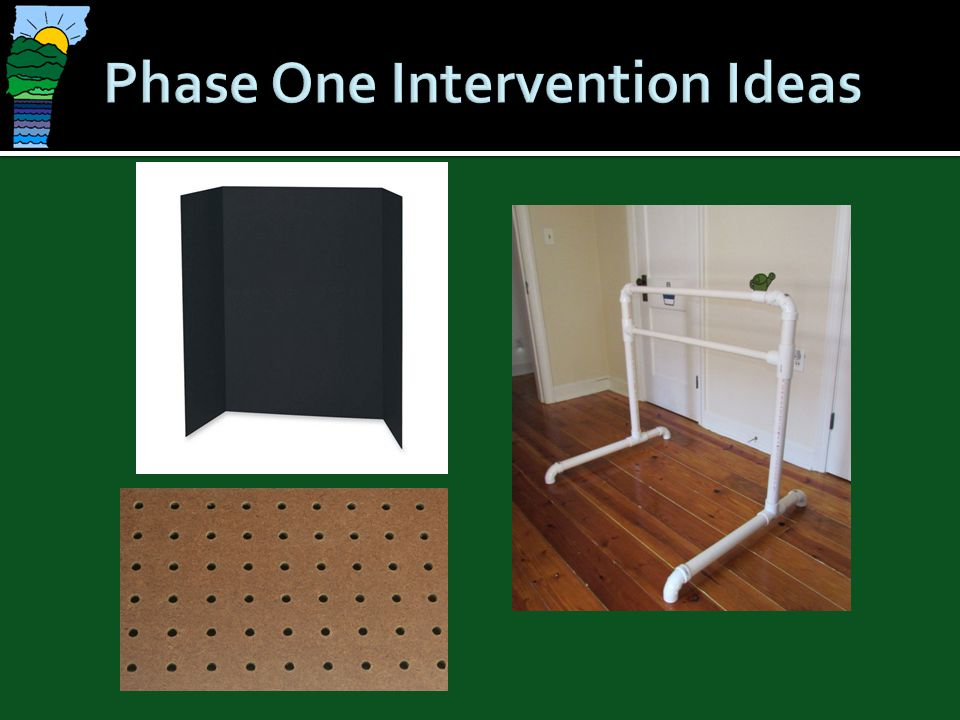 Phase One Intervention Ideas