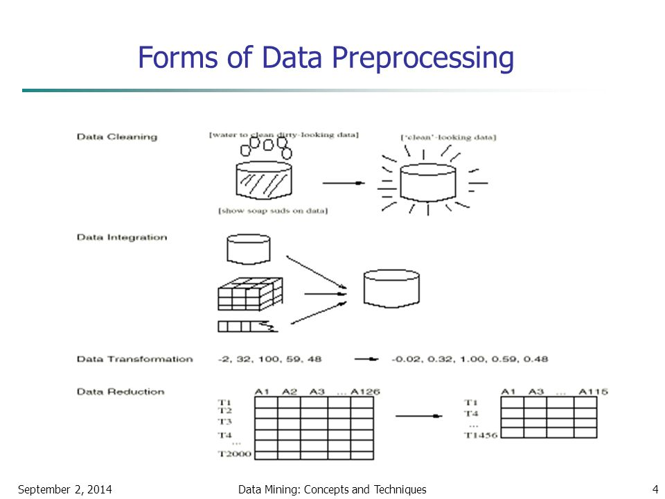 Forms of Data Preprocessing