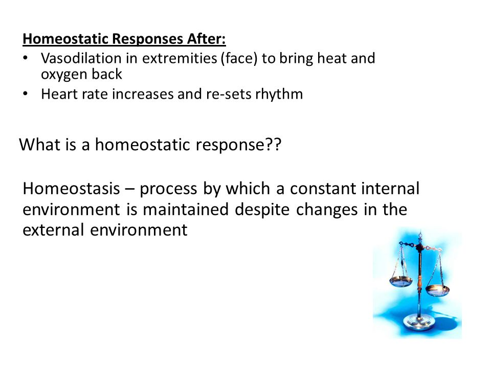 What is a homeostatic response