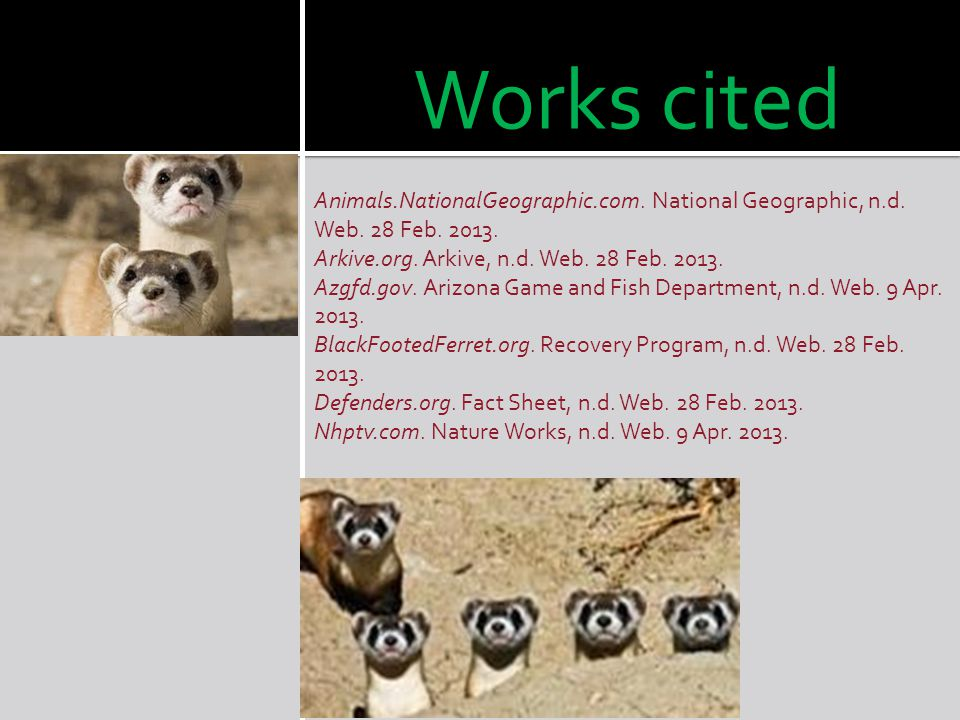 Works cited Animals.NationalGeographic.com. National Geographic, n.d. Web. 28 Feb. 2013. Arkive.org. Arkive, n.d. Web. 28 Feb. 2013.