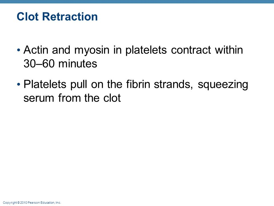 Clot Retraction Actin and myosin in platelets contract within 30–60 minutes.