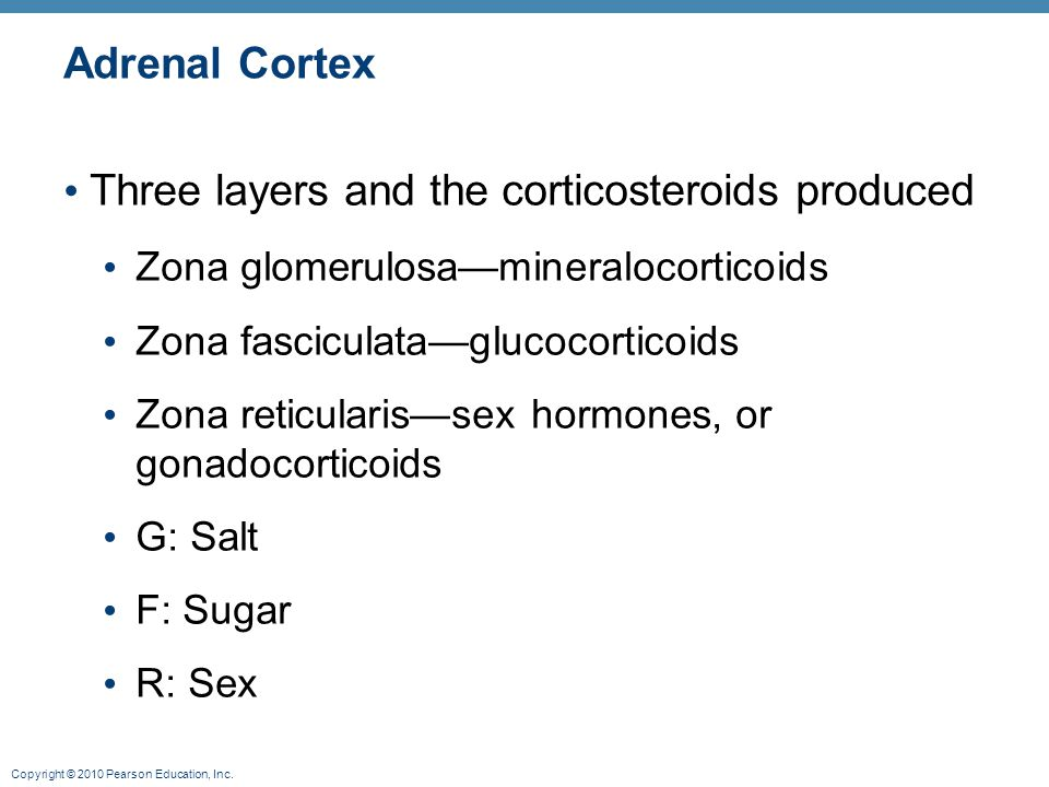 Three layers and the corticosteroids produced