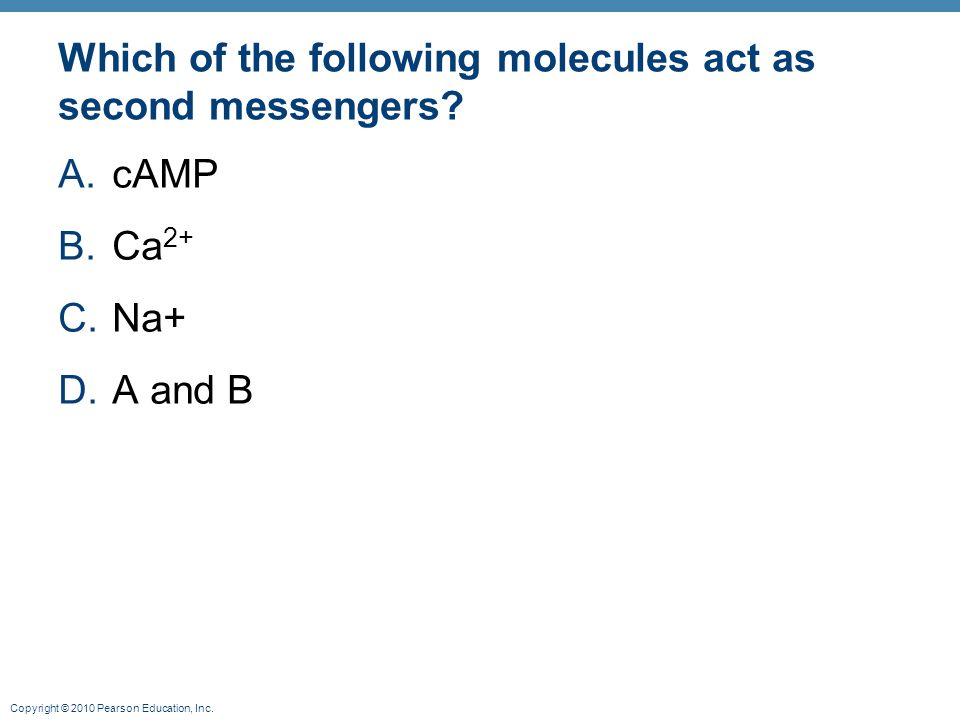 Which of the following molecules act as second messengers