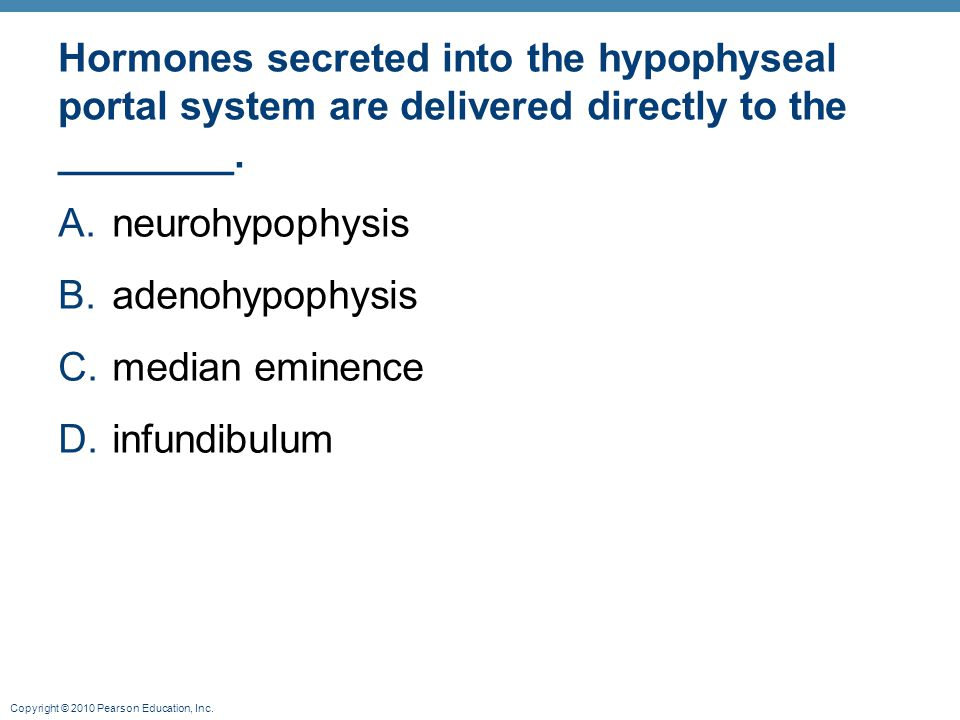 Hormones secreted into the hypophyseal portal system are delivered directly to the ________.