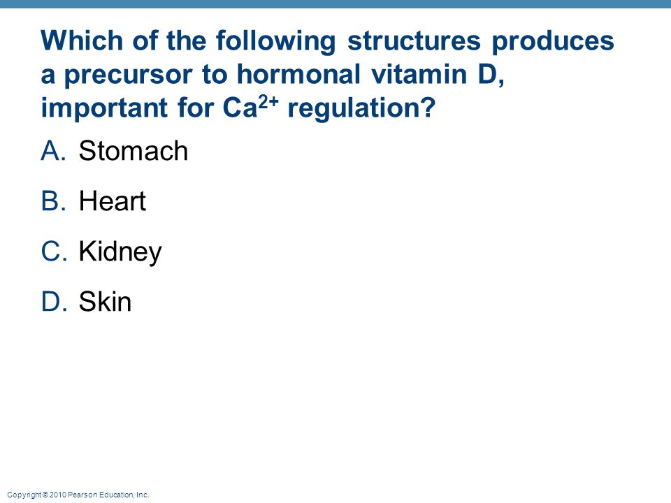 Which of the following structures produces a precursor to hormonal vitamin D, important for Ca2+ regulation