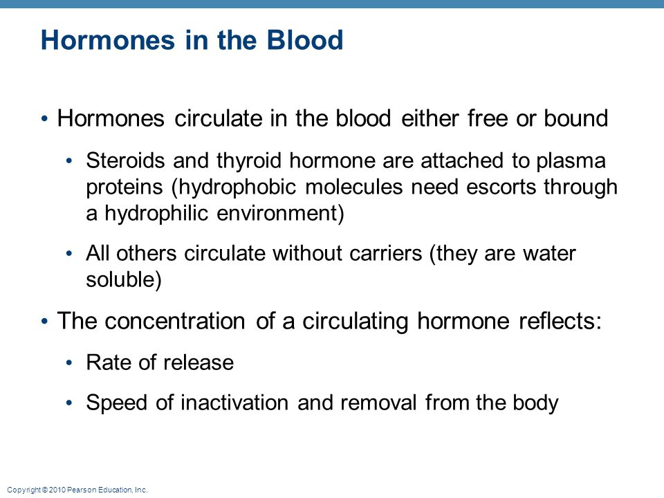 Hormones in the Blood Hormones circulate in the blood either free or bound.