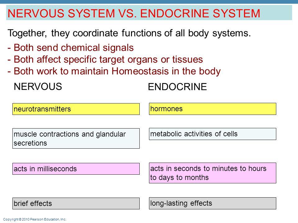 NERVOUS SYSTEM VS. ENDOCRINE SYSTEM