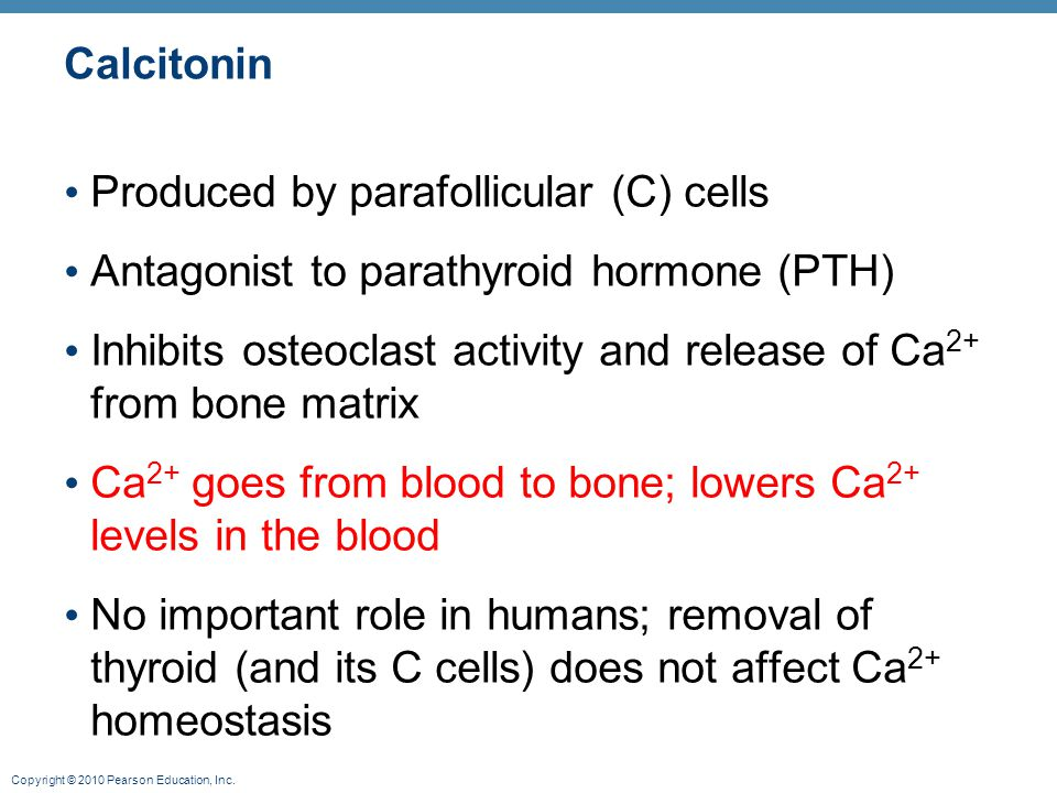 Calcitonin Produced by parafollicular (C) cells. Antagonist to parathyroid hormone (PTH)