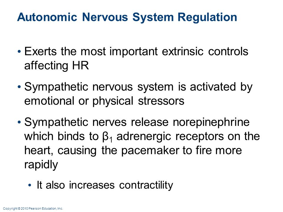 Autonomic Nervous System Regulation