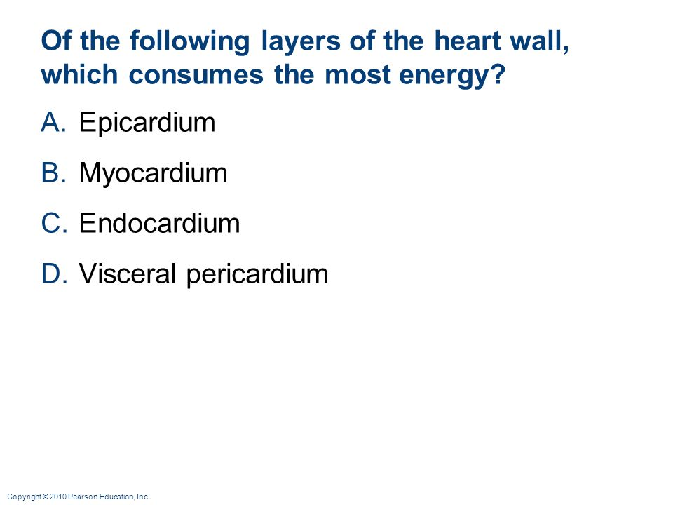 Of the following layers of the heart wall, which consumes the most energy