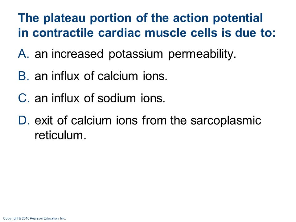an increased potassium permeability. an influx of calcium ions.