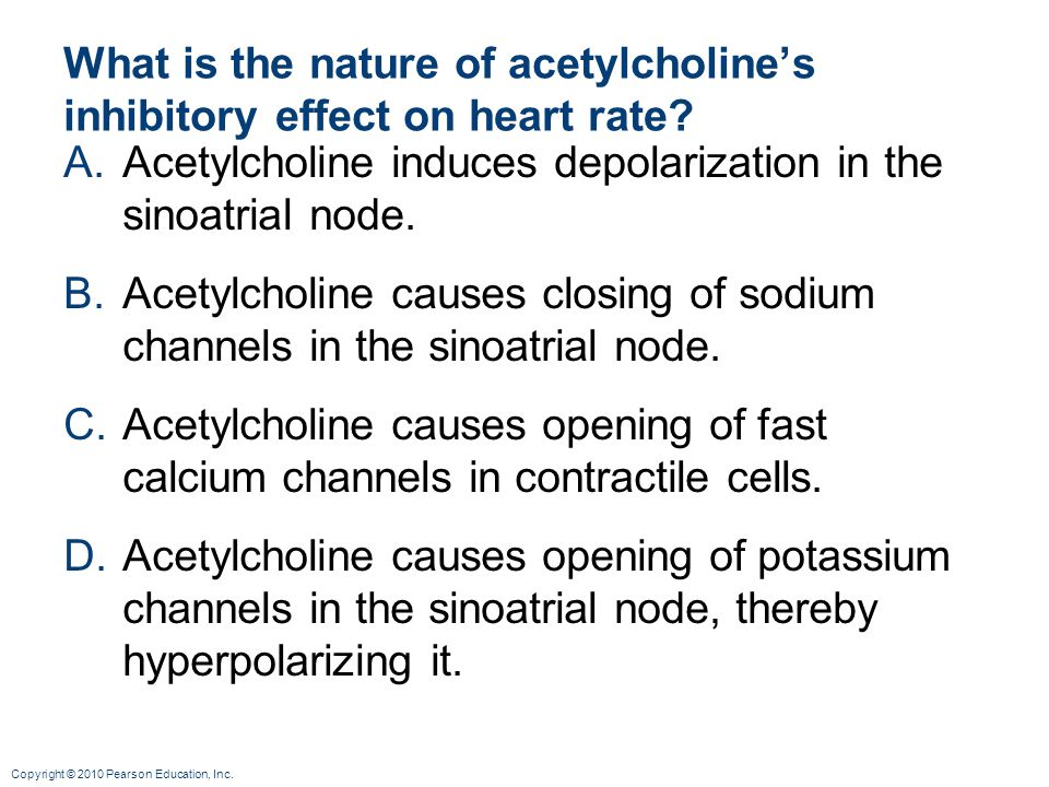 What is the nature of acetylcholine's inhibitory effect on heart rate