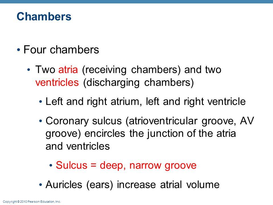 Chambers Four chambers