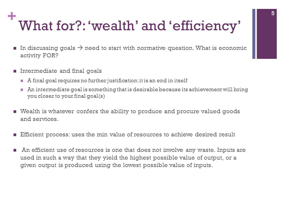 What for : 'wealth' and 'efficiency'