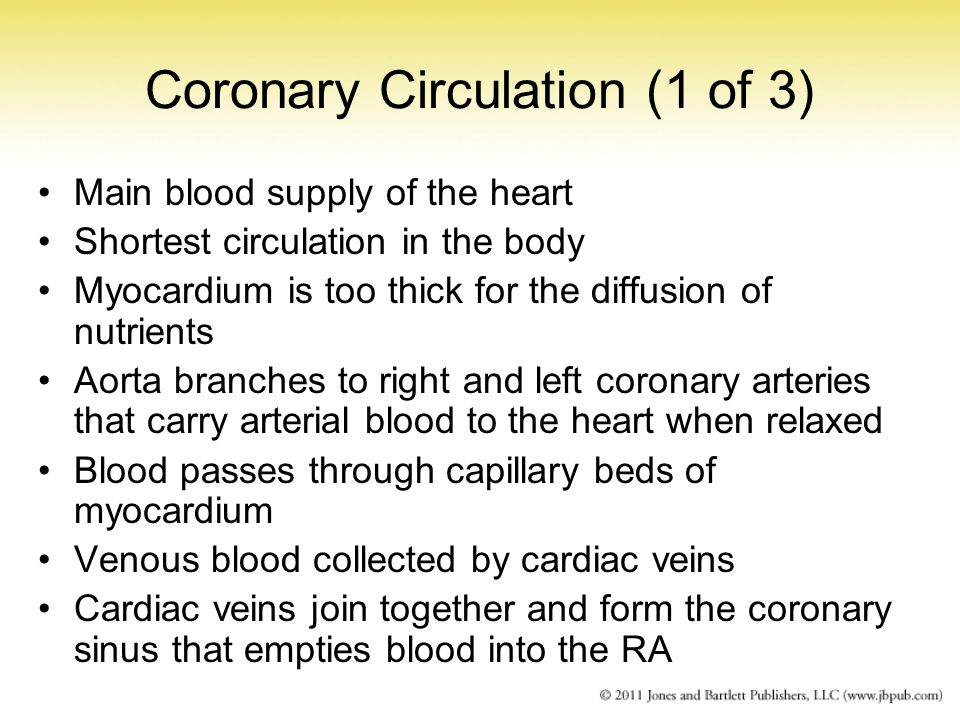 Coronary Circulation (1 of 3)