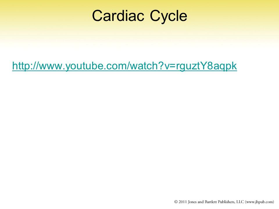 Cardiac Cycle http://www.youtube.com/watch v=rguztY8aqpk