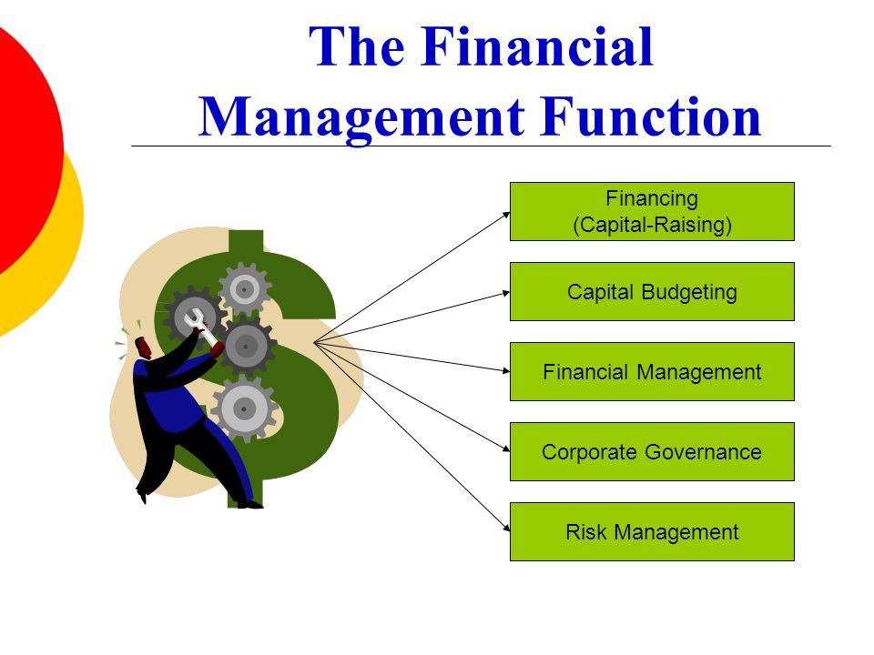 The Financial Management Function