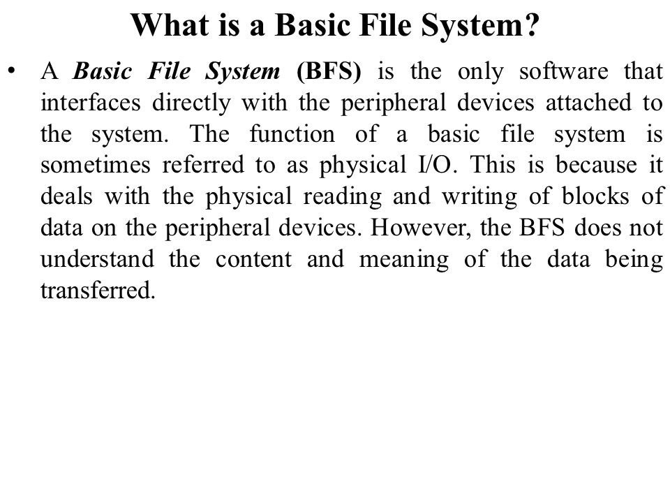 What is a Basic File System
