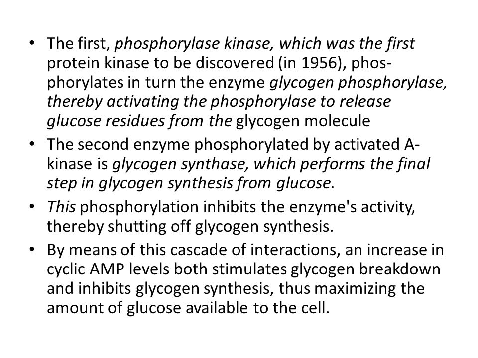 The first, phosphorylase kinase, which was the first protein kinase to be discovered (in 1956), phos-phorylates in turn the enzyme glycogen phosphorylase, thereby activating the phosphorylase to release glucose residues from the glycogen molecule