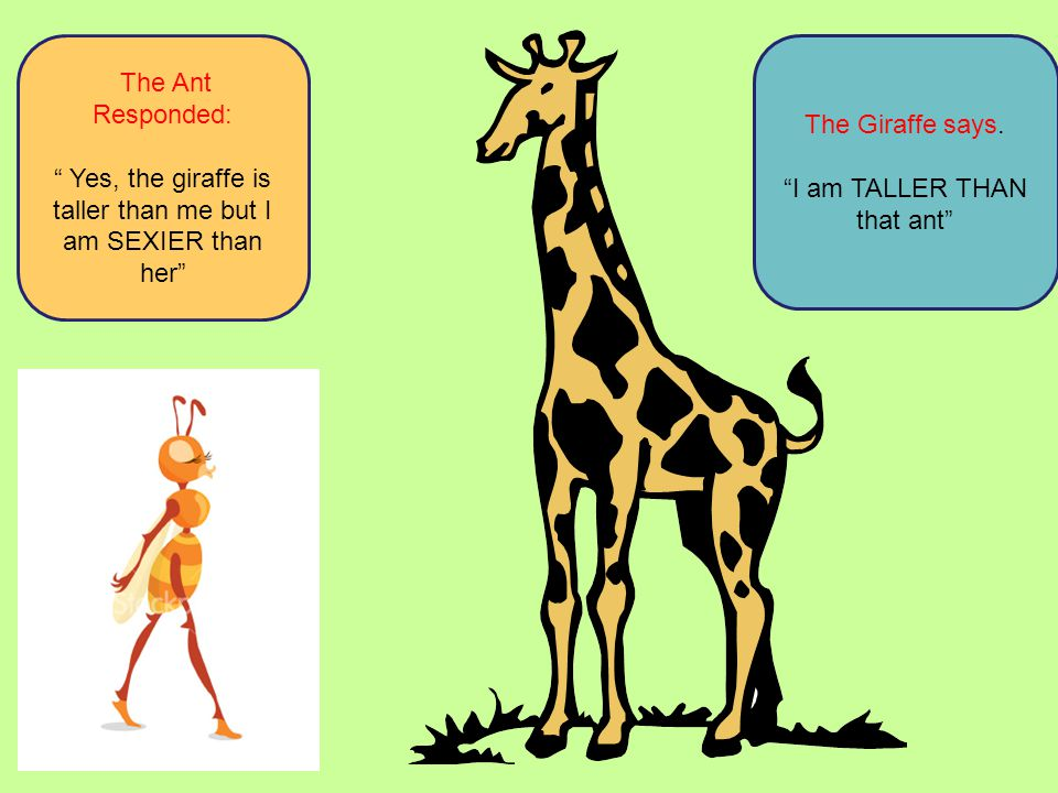 Yes, the giraffe is taller than me but I am SEXIER than her