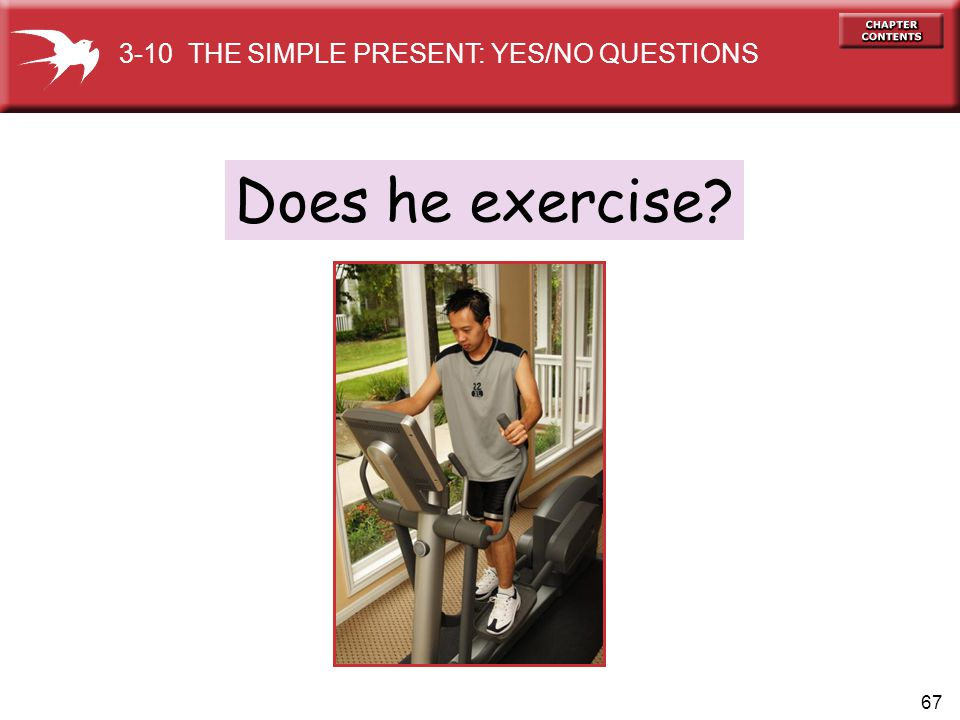 3-10 THE SIMPLE PRESENT: YES/NO QUESTIONS