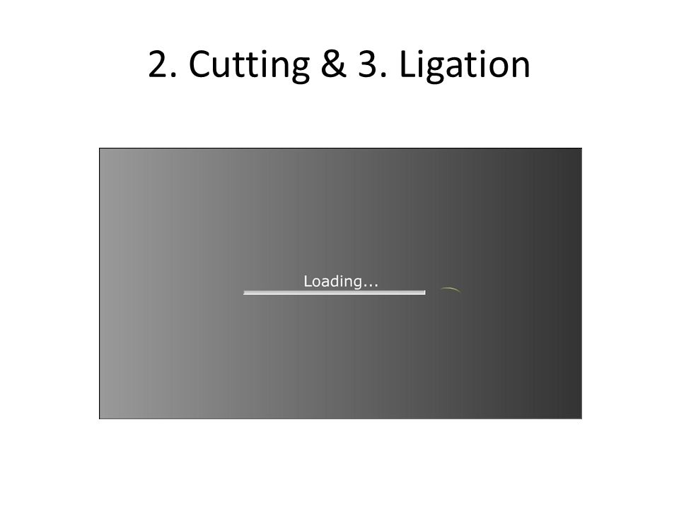 2. Cutting & 3. Ligation