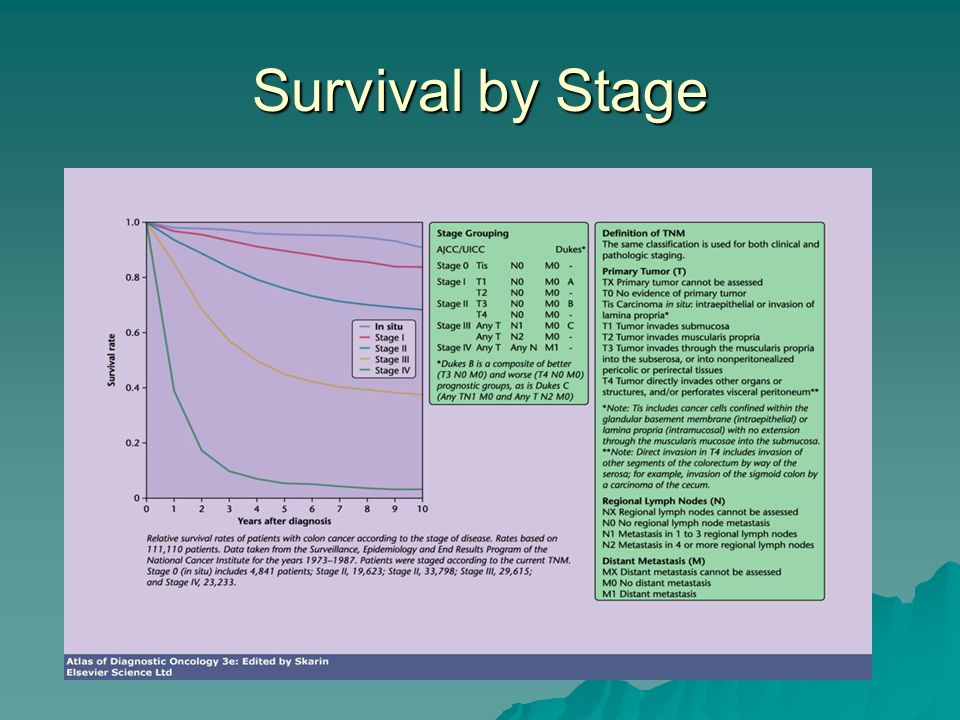 Survival by Stage