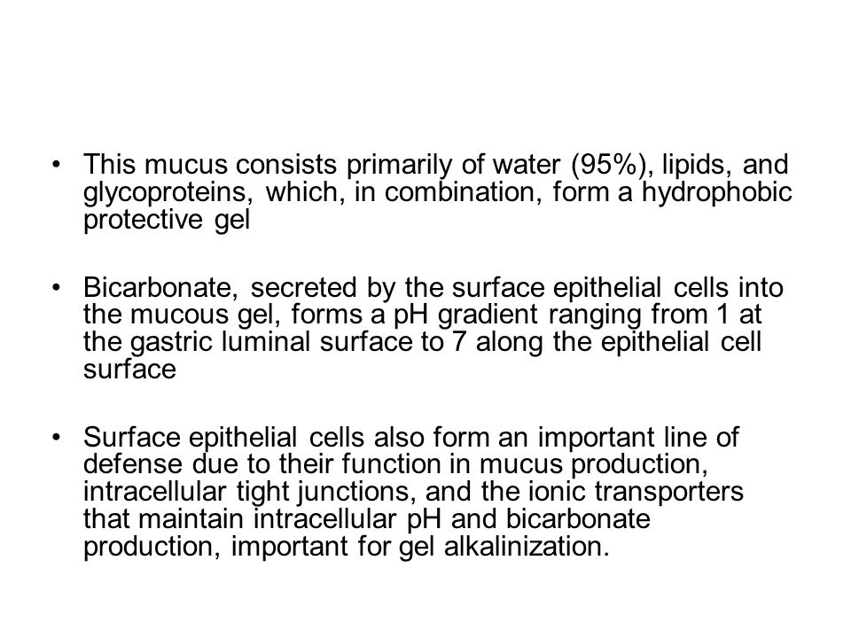 This mucus consists primarily of water (95%), lipids, and glycoproteins, which, in combination, form a hydrophobic protective gel