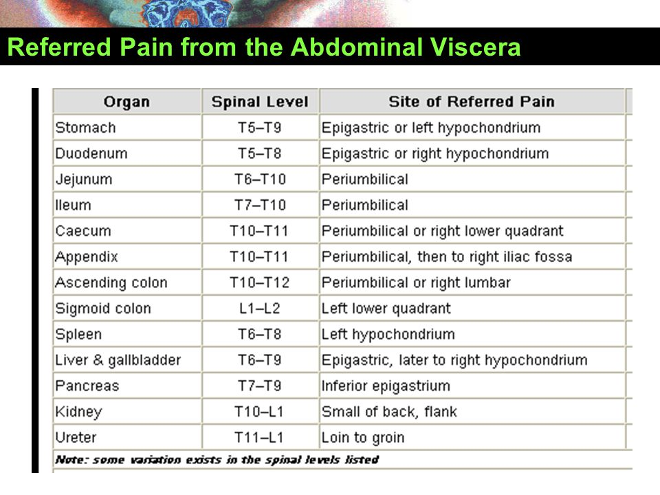 Referred Pain from the Abdominal Viscera