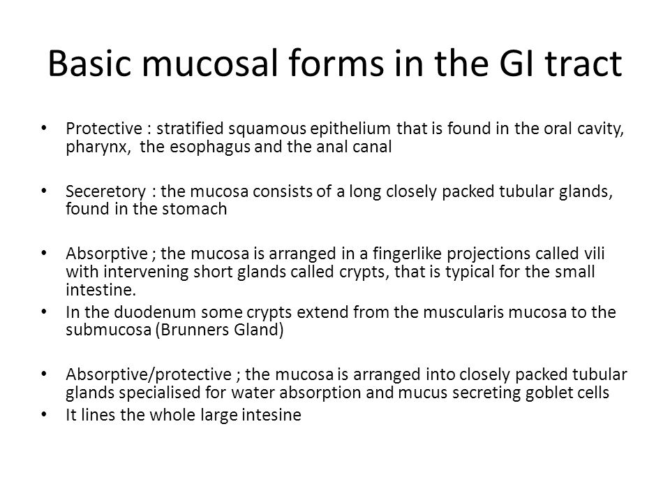 Basic mucosal forms in the GI tract