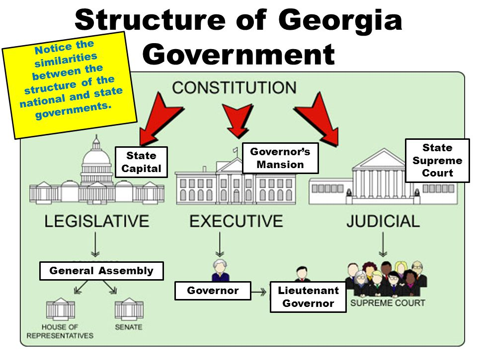 georgias court system On behalf of the council of state court judges  this is a very exciting time for the georgia judicial system as the state advances in accountability courts such.