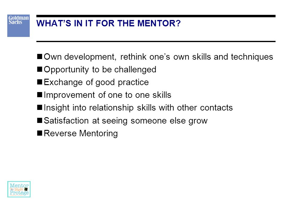 WHAT CAN A MENTOR OFFER A broader, more strategic view of the business. Help in developing networks.