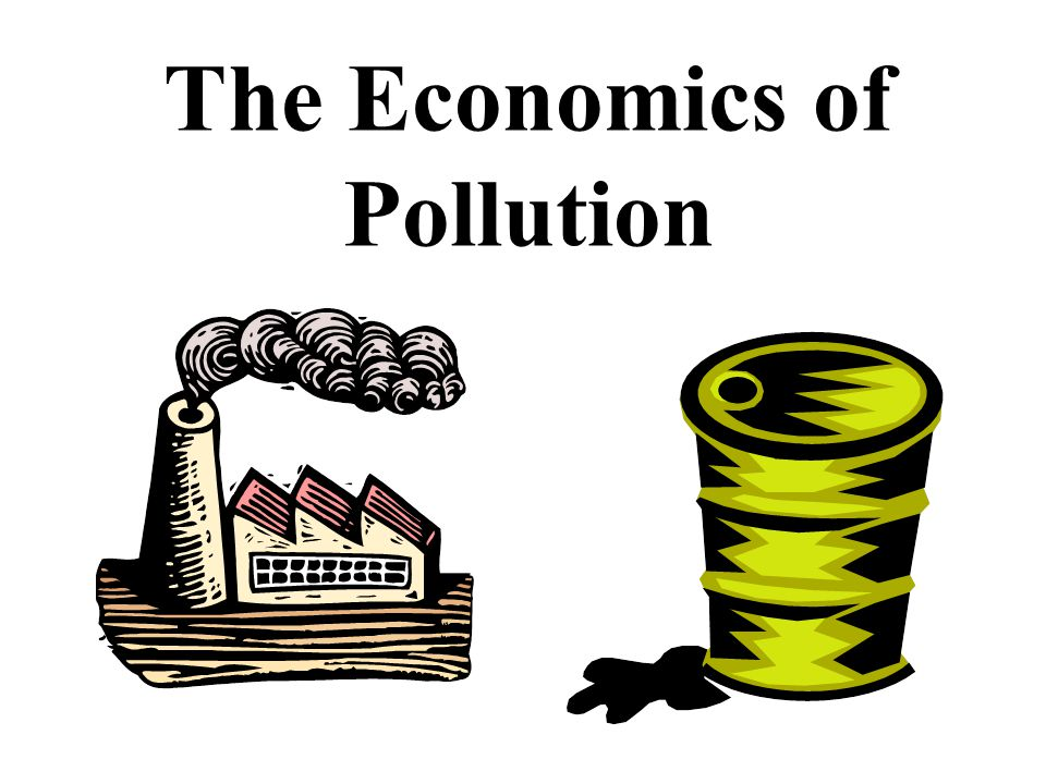 The Economics of Pollution