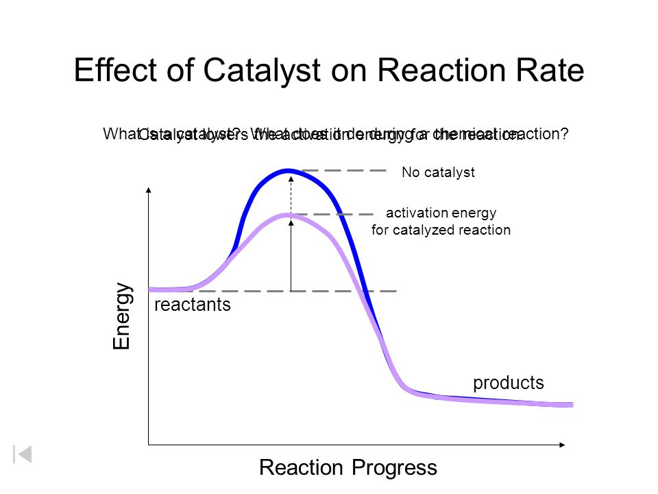 Effect of Catalyst on Reaction Rate