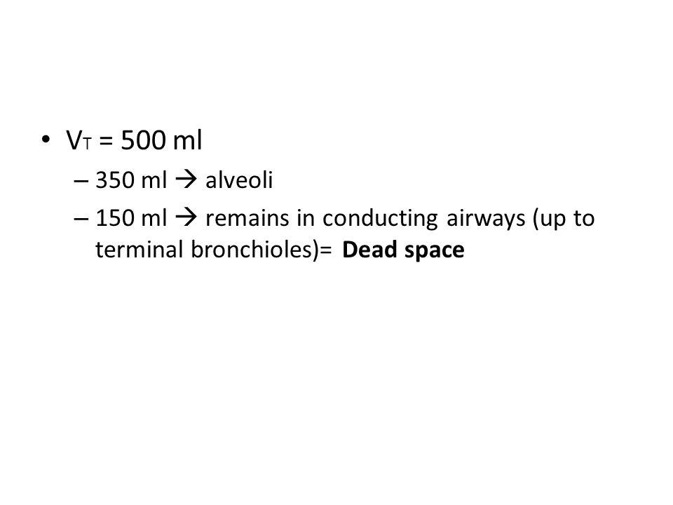 VT = 500 ml 350 ml  alveoli.