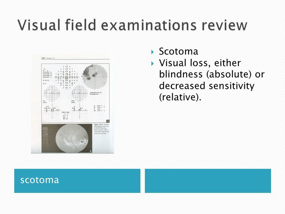 Visual field examinations review