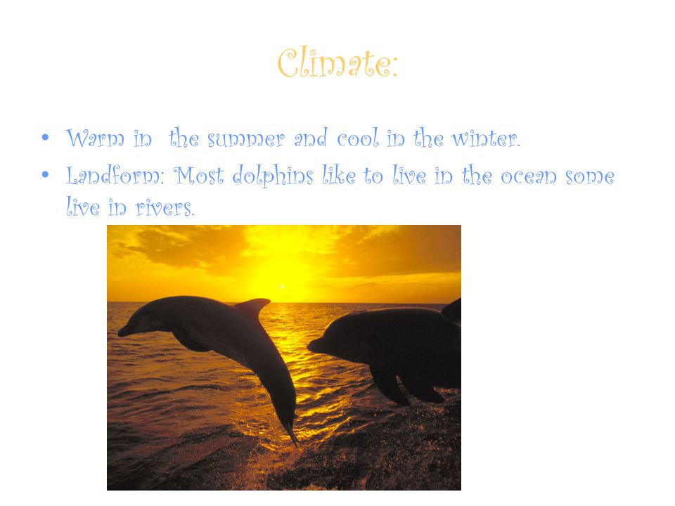 Climate: Warm in the summer and cool in the winter.