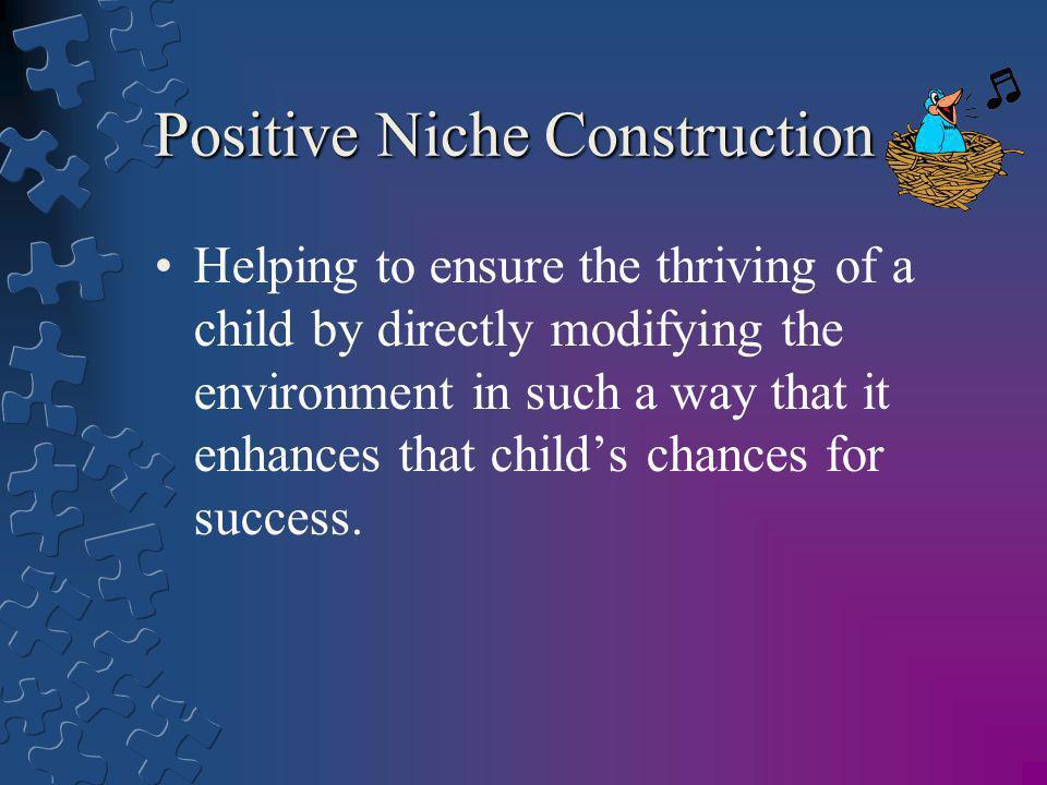 Positive Niche Construction