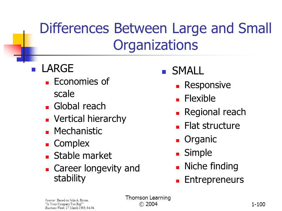 Differences Between Large and Small Organizations