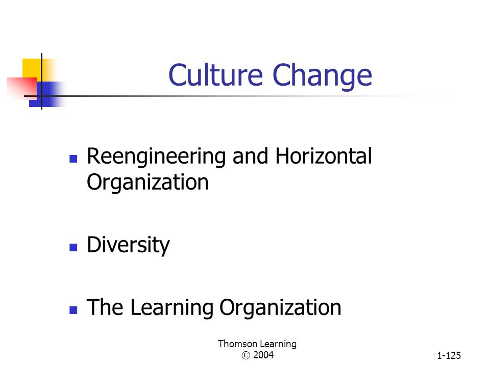 Culture Change Reengineering and Horizontal Organization Diversity