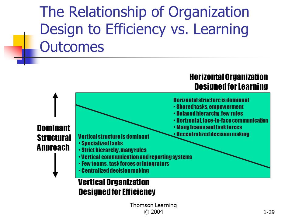 The Relationship of Organization Design to Efficiency vs