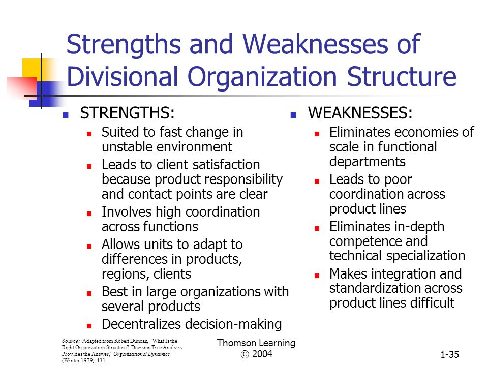 Strengths and Weaknesses of Divisional Organization Structure