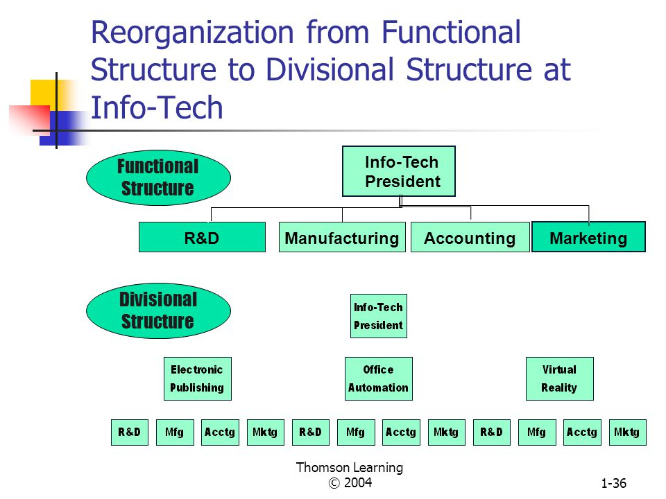 Reorganization from Functional Structure to Divisional Structure at Info-Tech