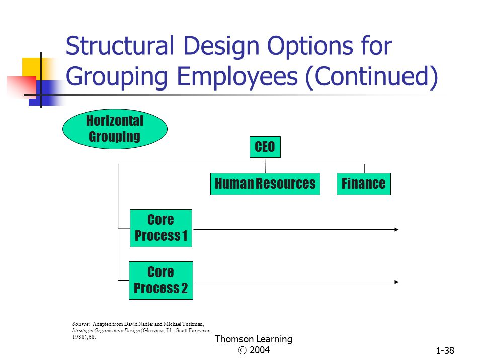 Structural Design Options for Grouping Employees (Continued)