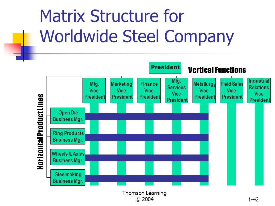 Matrix Structure for Worldwide Steel Company